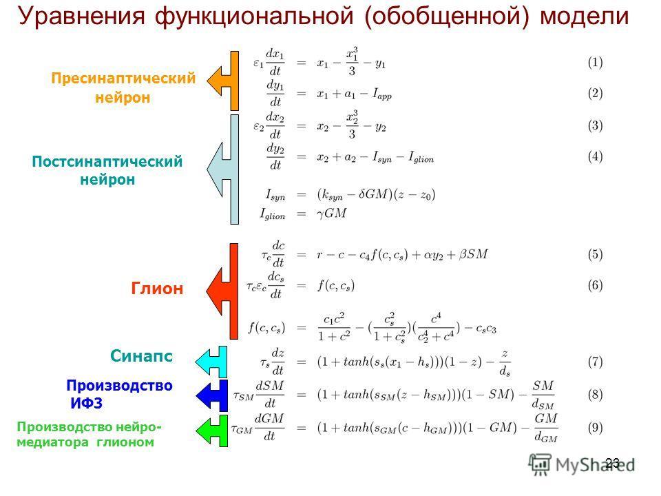 23 Пресинаптический нейрон Постсинаптический нейрон Глион Синапс Производство ИФ3 Производство нейро- медиатора глионом Уравнения функциональной (обобщенной) модели