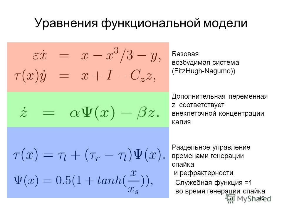 40 Уравнения функциональной модели Базовая возбудимая система (FitzHugh-Nagumo)) Дополнительная переменная z соответствует внеклеточной концентрации калия Раздельное управление временами генерации спайка и рефрактерности Служебная функция =1 во время