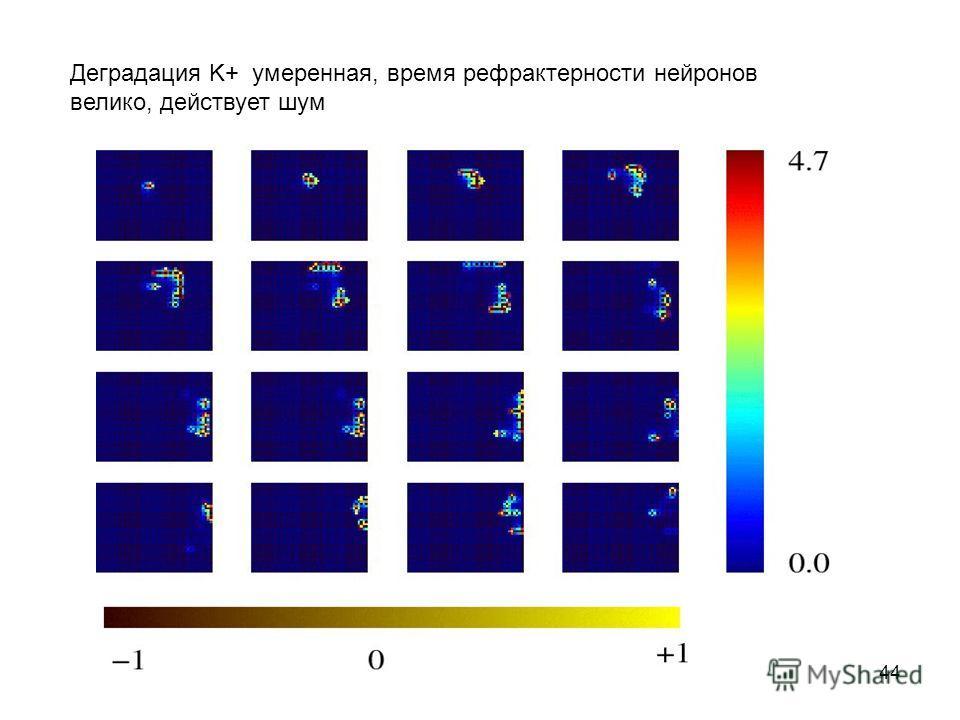 44 Деградация K+ умеренная, время рефрактерности нейронов велико, действует шум