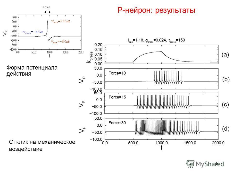 8 P-нейрон: результаты Форма потенциала действия 15 мс V rest =-45 мВ V max =+30 мВ V min =-80 мВ Отклик на механическое воздействие