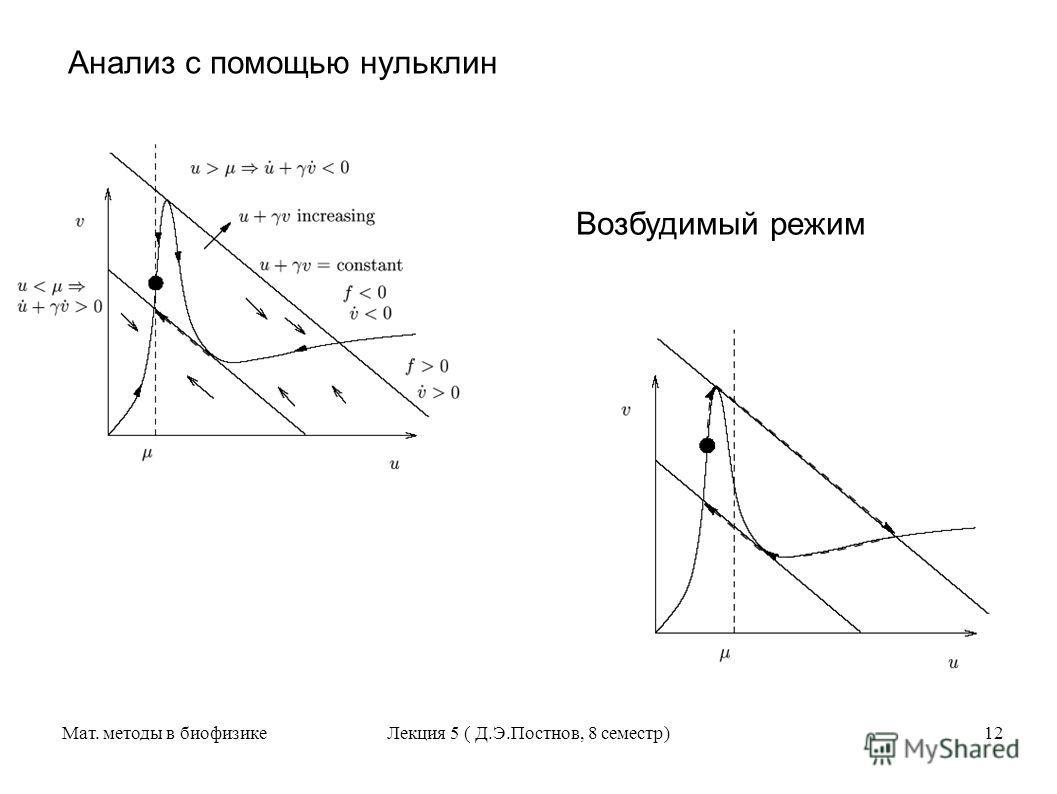 Мат. методы в биофизикеЛекция 5 ( Д.Э.Постнов, 8 семестр)12 Анализ с помощью нульклин Возбудимый режим