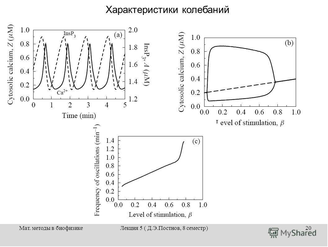 Мат. методы в биофизикеЛекция 5 ( Д.Э.Постнов, 8 семестр)20 Характеристики колебаний
