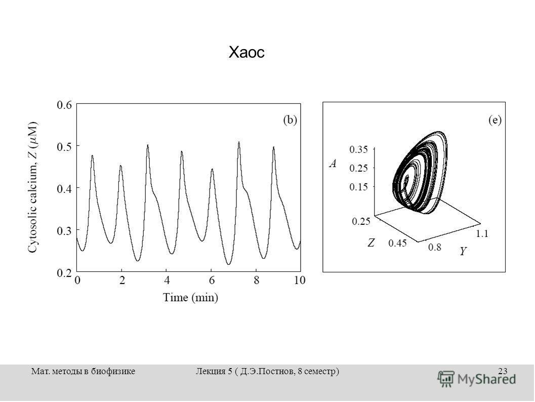 Мат. методы в биофизикеЛекция 5 ( Д.Э.Постнов, 8 семестр)23 Хаос