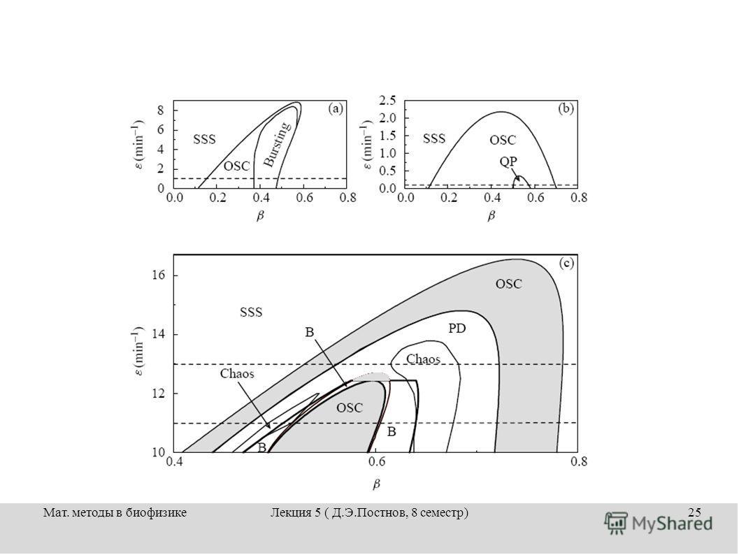 Мат. методы в биофизикеЛекция 5 ( Д.Э.Постнов, 8 семестр)25