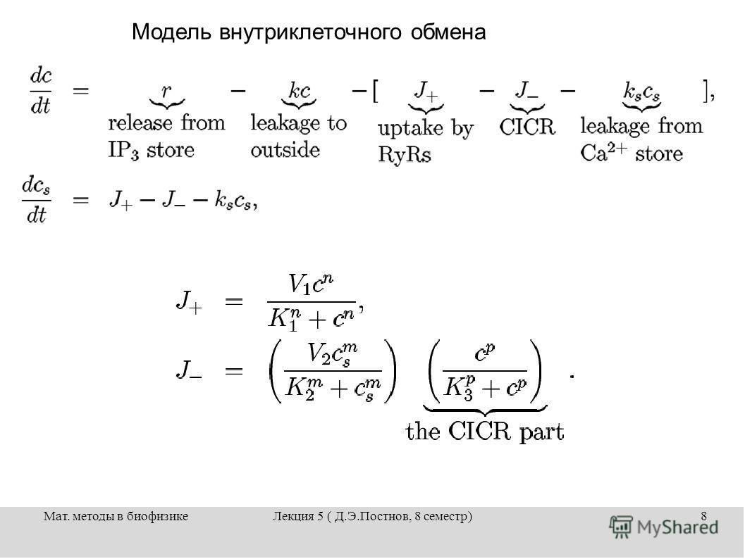 Мат. методы в биофизикеЛекция 5 ( Д.Э.Постнов, 8 семестр)8 Модель внутриклеточного обмена