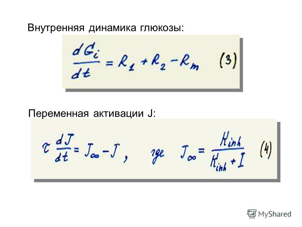 Переменная активации J: Внутренняя динамика глюкозы: