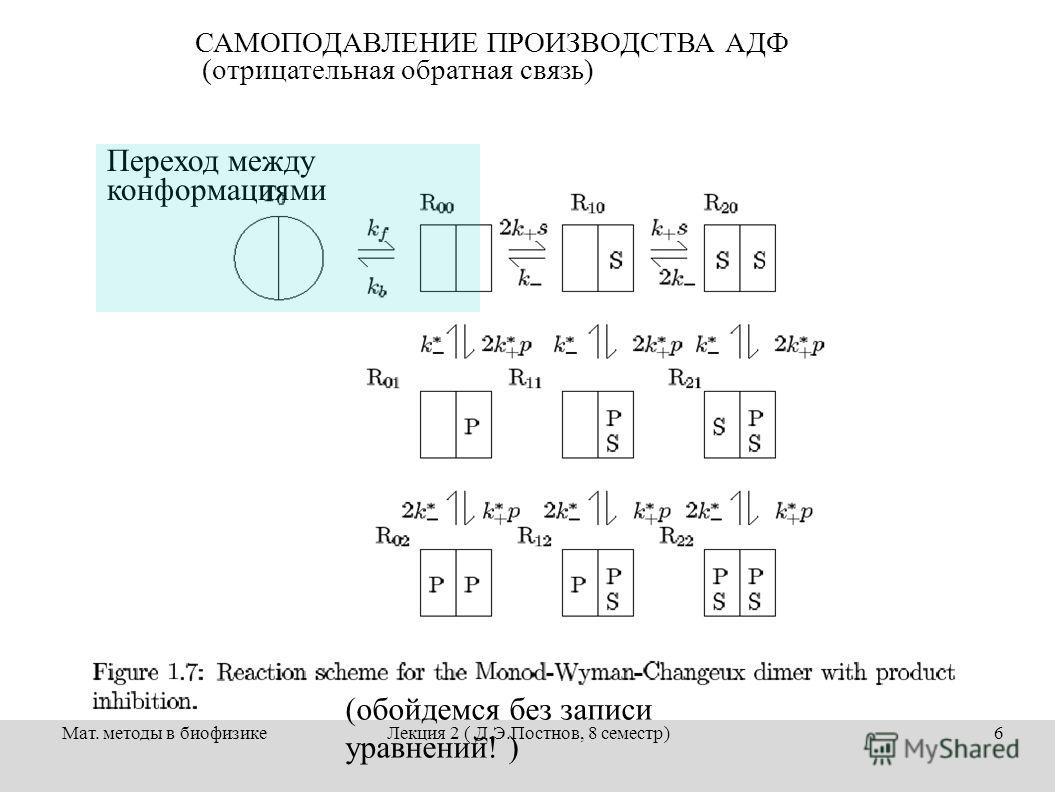 Мат. методы в биофизикеЛекция 2 ( Д.Э.Постнов, 8 семестр)6 САМОПОДАВЛЕНИЕ ПРОИЗВОДСТВА АДФ (отрицательная обратная связь) Переход между конформациями (обойдемся без записи уравнений! )