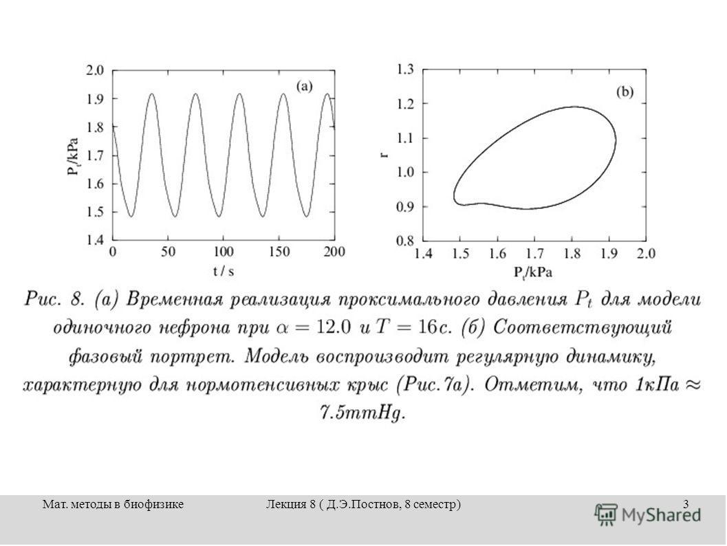 Мат. методы в биофизикеЛекция 8 ( Д.Э.Постнов, 8 семестр)3