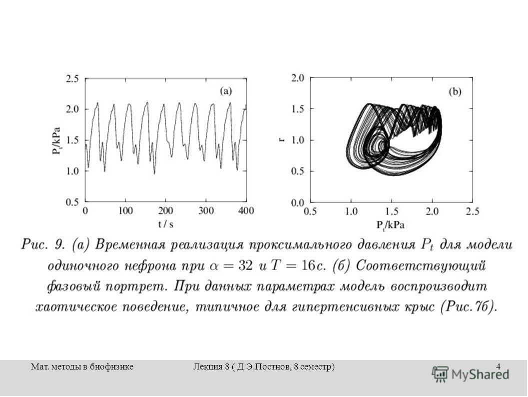 Мат. методы в биофизикеЛекция 8 ( Д.Э.Постнов, 8 семестр)4