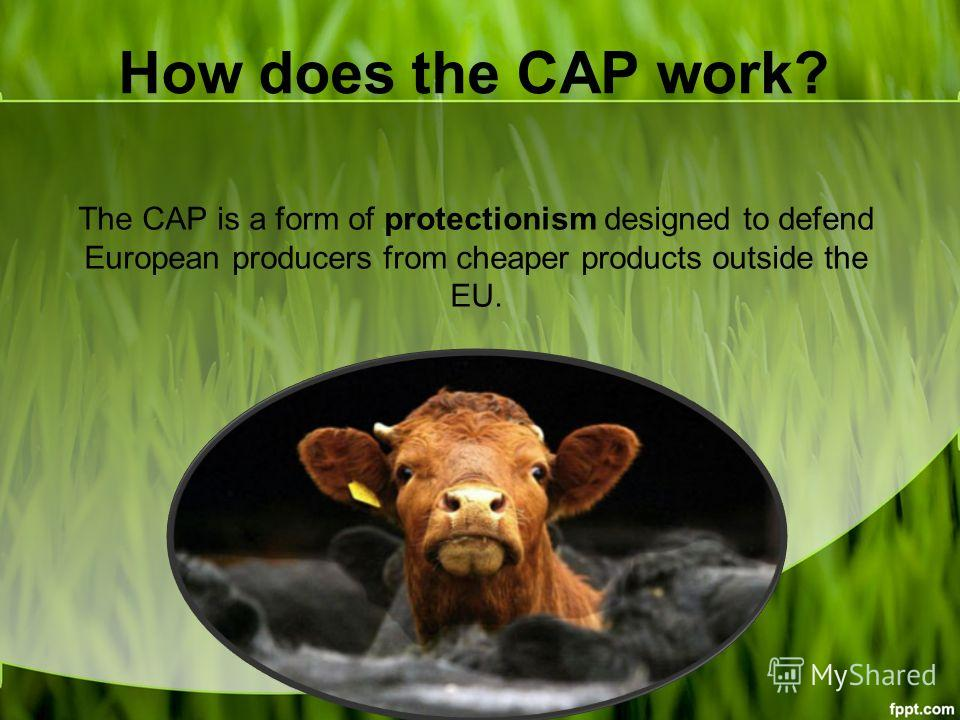 How does the CAP work? The CAP is a form of protectionism designed to defend European producers from cheaper products outside the EU.