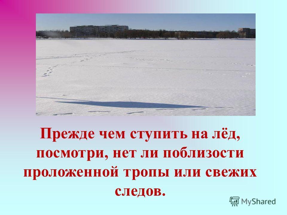 Прежде чем ступить на лёд, посмотри, нет ли поблизости проложенной тропы или свежих следов.