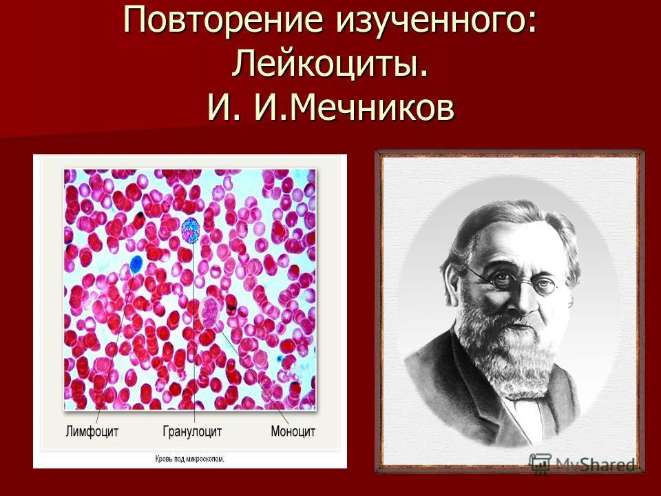 Повторение изученного: Лейкоциты. И. И.Мечников