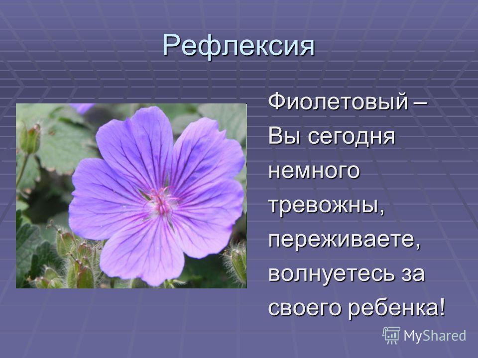 Рефлексия Фиолетовый – Вы сегодня немноготревожны,переживаете, волнуетесь за своего ребенка!