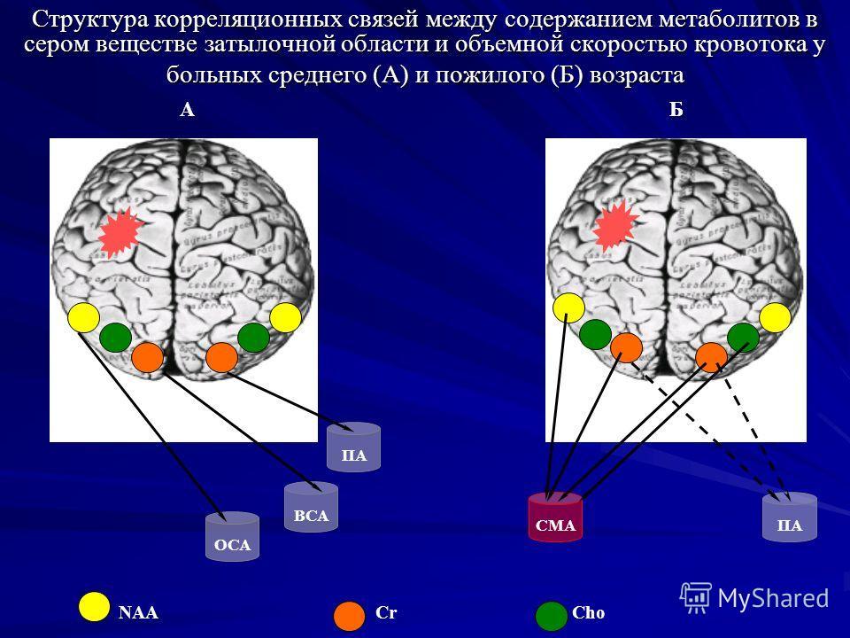 Структура корреляционных связей между содержанием метаболитов в сером веществе затылочной области и объемной скоростью кровотока у больных среднего (А) и пожилого (Б) возраста NAA Cr Cho ОСА ВСА ПА СМА ПА АБ