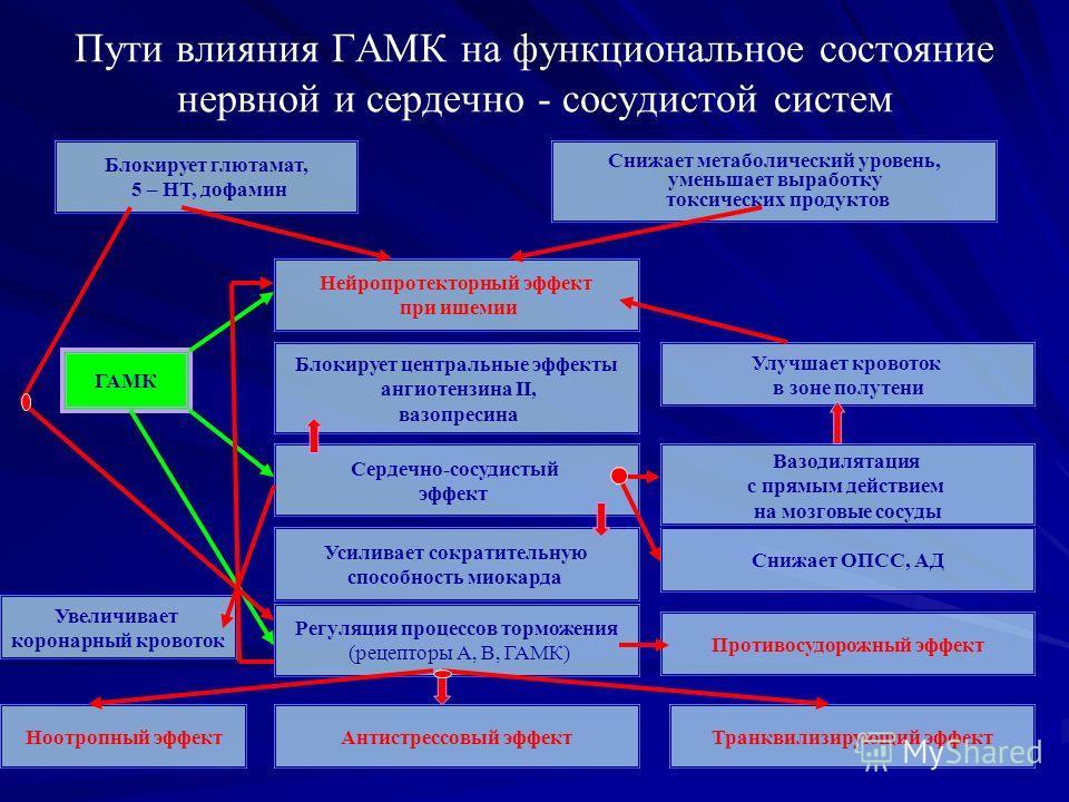 Пути влияния ГАМК на функциональное состояние нервной и сердечно - сосудистой систем Блокирует глютамат, 5 – НТ, дофамин Снижает метаболический уровень, уменьшает выработку токсических продуктов Нейропротекторный эффект при ишемии Блокирует центральн