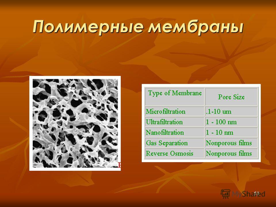 53 Полимерные мембраны