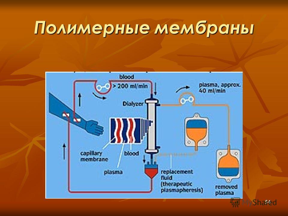 54 Полимерные мембраны