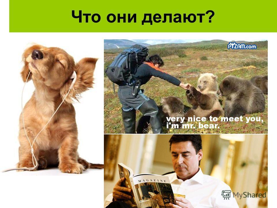 Что они делают? Собака (щенок) слушает музыку. Мужчина читает журнал. Он встречает друга. (медведя).