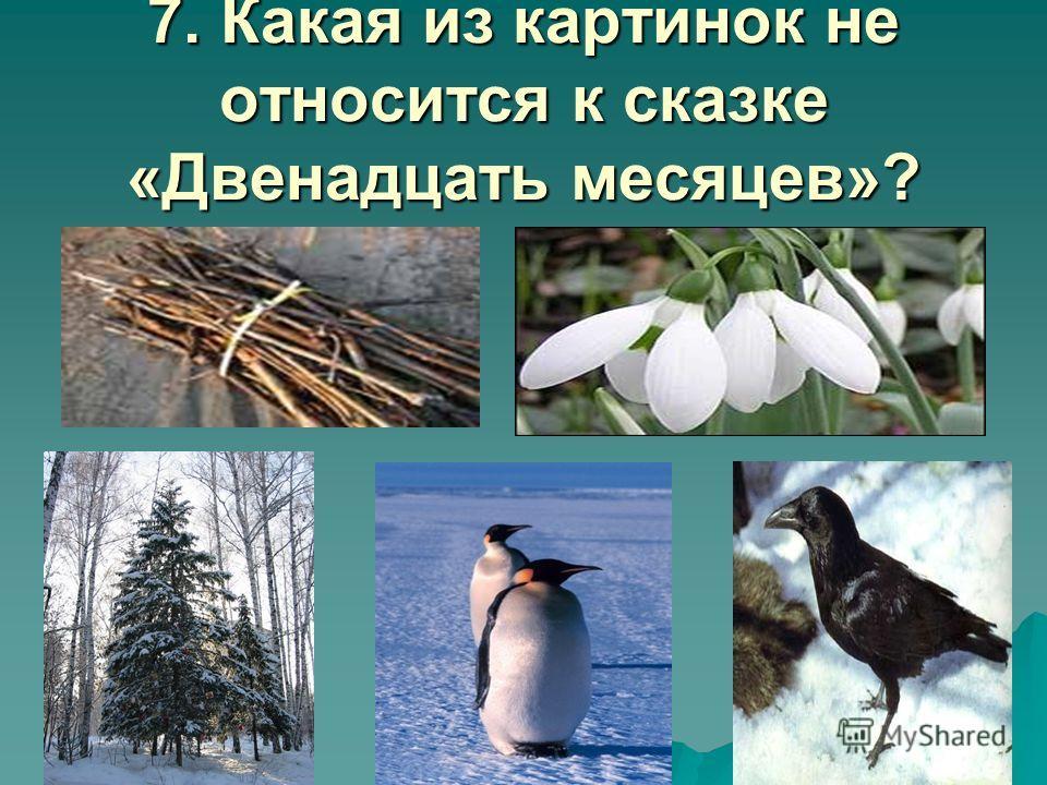 6. Какие звери и птицы были в лесу в тот день? Белки 40 Белки 40 Заяц 30 Заяц 30 Волк 20 Волк 20 Ворон 10 Ворон 10 1. 2. 3. 4.