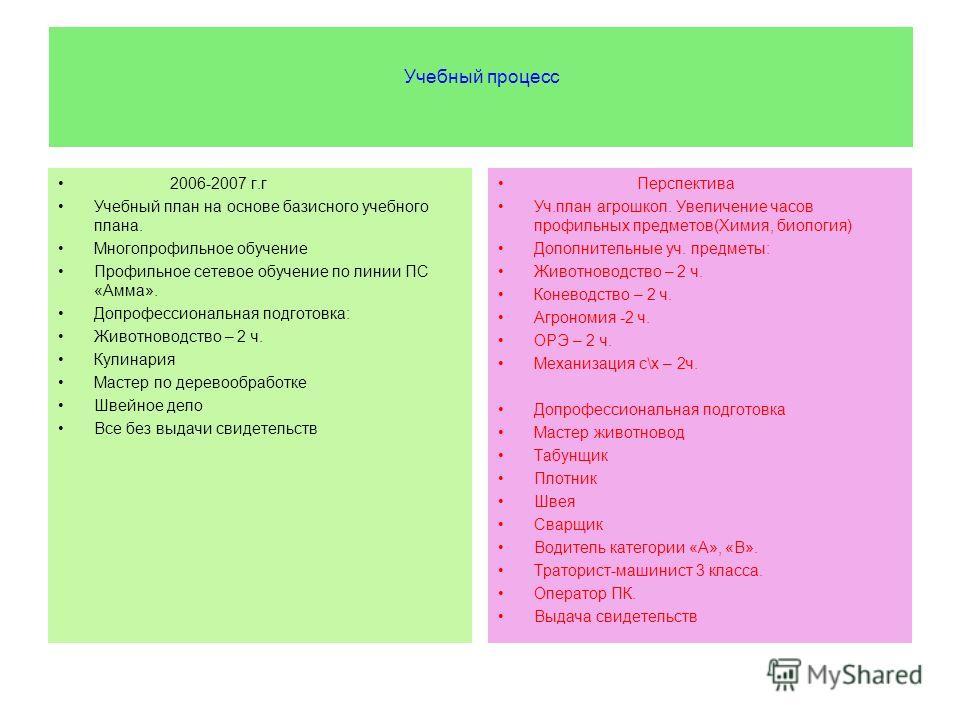 Учебный процесс 2006-2007 г.г Учебный план на основе базисного учебного плана. Многопрофильное обучение Профильное сетевое обучение по линии ПС «Амма». Допрофессиональная подготовка: Животноводство – 2 ч. Кулинария Мастер по деревообработке Швейное д