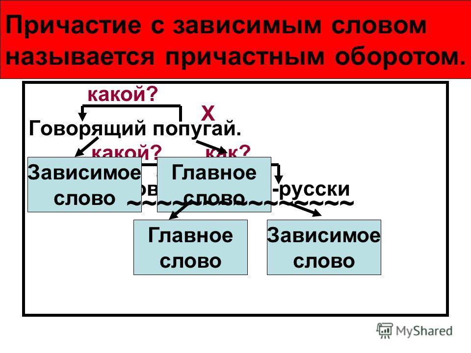 Причастный оборот Говорящий попугай. Попугай, говорящий по-русски X какой? X X как? Зависимое слово Главное слово Зависимое слово Главное слово Причастие с зависимым словом называется причастным оборотом. ~~~~~~~~~~~~~~~