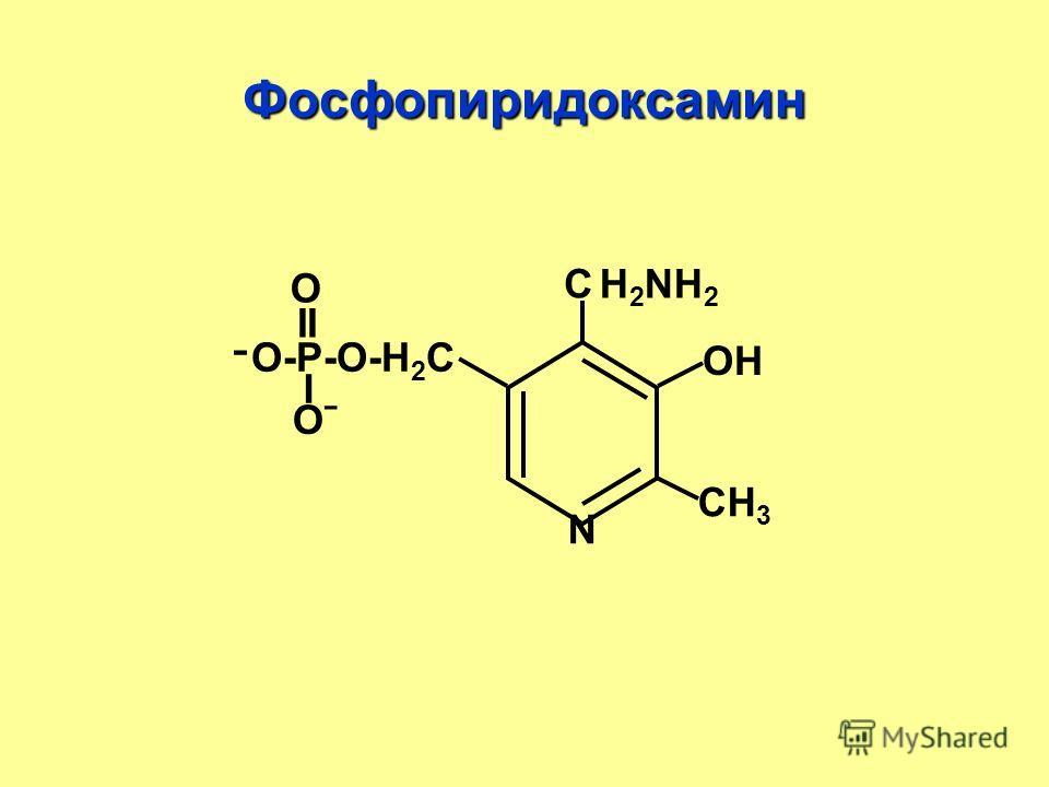 Фосфопиридоксамин С N CН3CН3 ОН ־О-Р-О-Н 2 С II О I ОˉОˉ Н2NН2Н2NН2