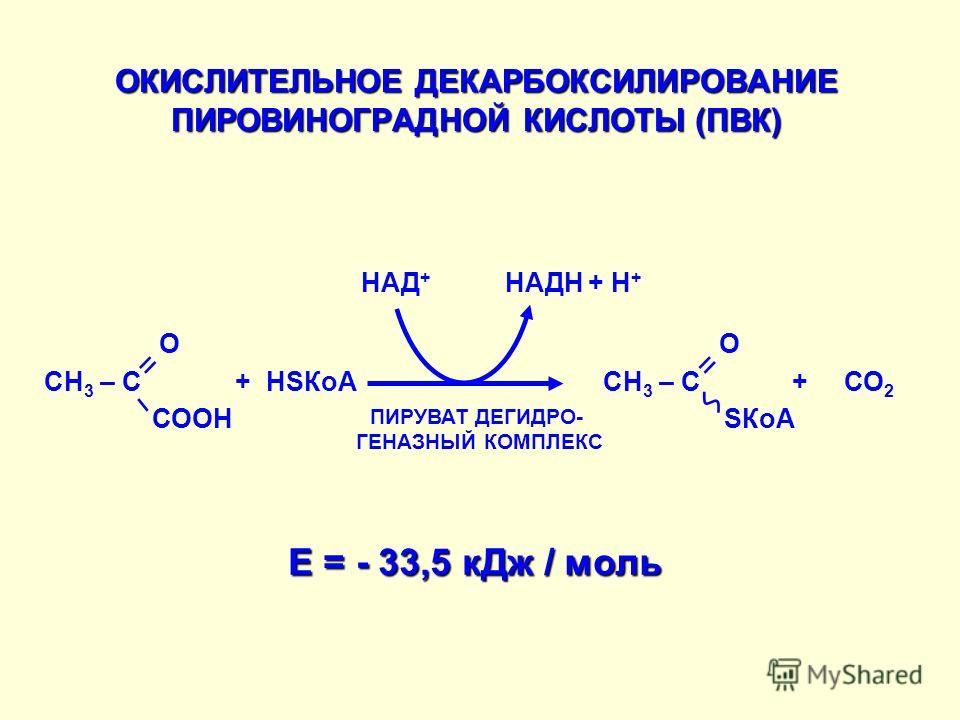 ОКИСЛИТЕЛЬНОЕ ДЕКАРБОКСИЛИРОВАНИЕ ПИРОВИНОГРАДНОЙ КИСЛОТЫ (ПВК) + HSКоА СН 3 – С О + СО 2 НАД + НАДН + Н + ПИРУВАТ ДЕГИДРО- ГЕНАЗНЫЙ КОМПЛЕКС E = - 33,5 кДж / моль = – СООН СН 3 – С О = SКоА