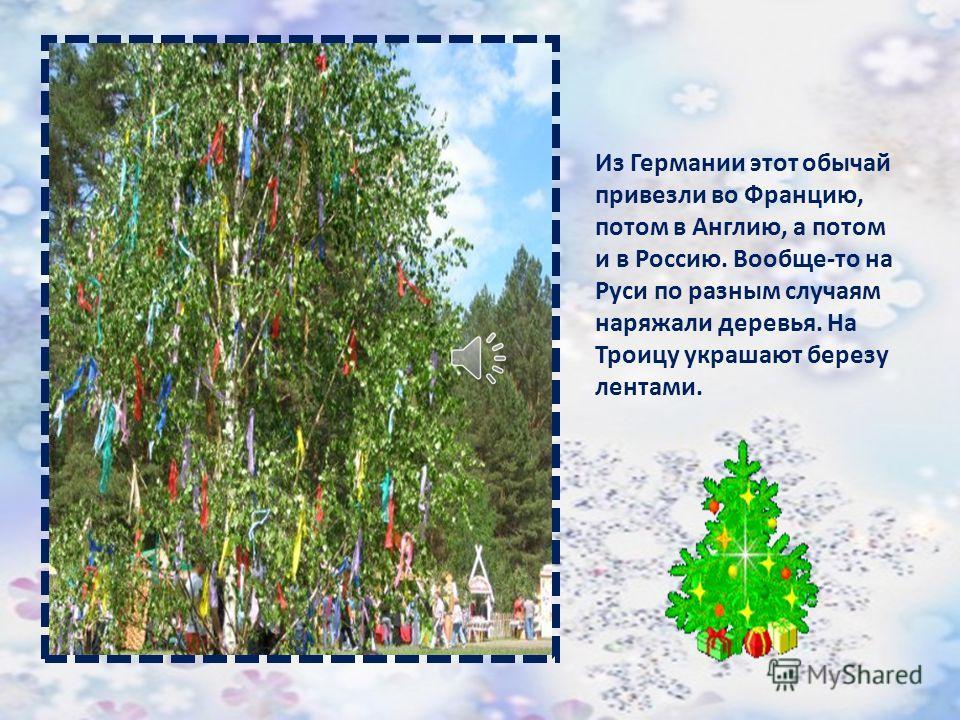 Обычай выделять из всех деревьев именно елку и украшать ее на праздник родился у жителей Германии. Елку украшали яблоками – символом плодородия, орехами – символом надежды и яйцами – символом жизни.
