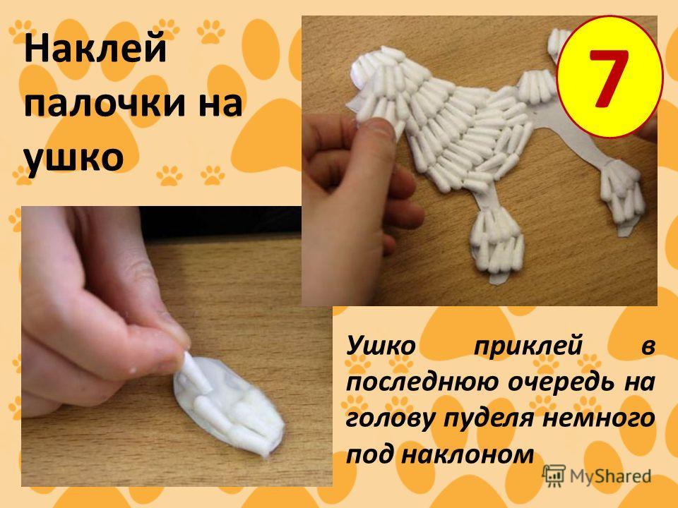 7 Наклей палочки на ушко Ушко приклей в последнюю очередь на голову пуделя немного под наклоном