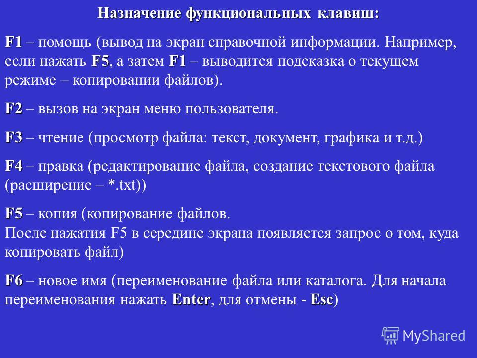 Назначение функциональных клавиш: F1 F5F1 F1 – помощь (вывод на экран справочной информации. Например, если нажать F5, а затем F1 – выводится подсказка о текущем режиме – копировании файлов). F2 F2 – вызов на экран меню пользователя. F3 F3 – чтение (