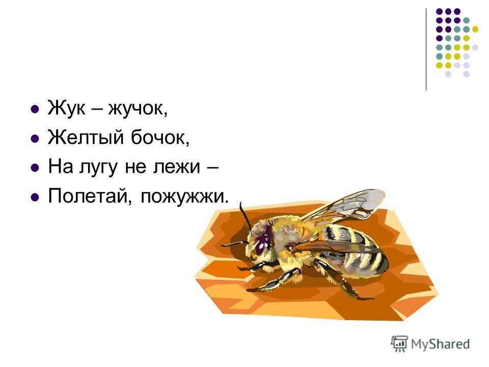 Жук – жучок, Желтый бочок, На лугу не лежи – Полетай, пожужжи.