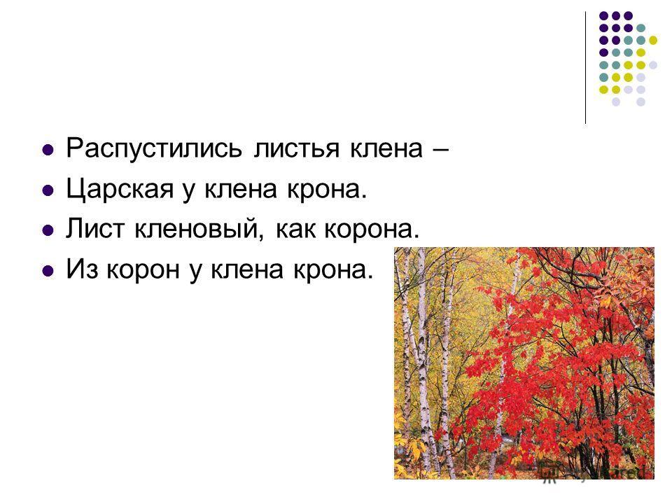 Распустились листья клена – Царская у клена крона. Лист кленовый, как корона. Из корон у клена крона.