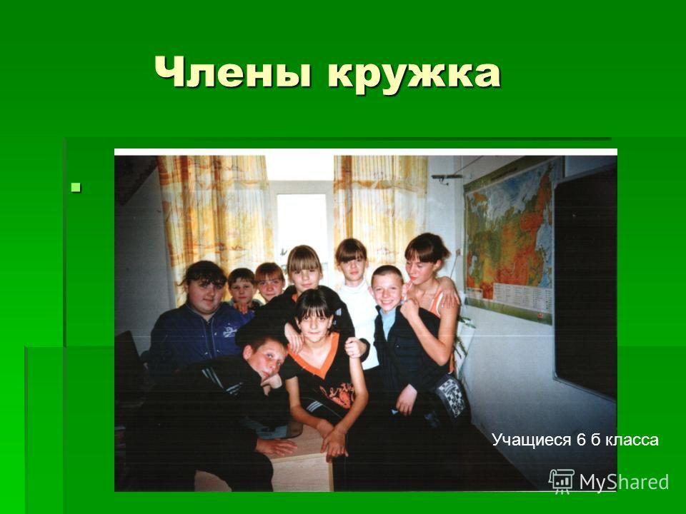 Члены кружка Члены кружка Учащиеся 6 б класса