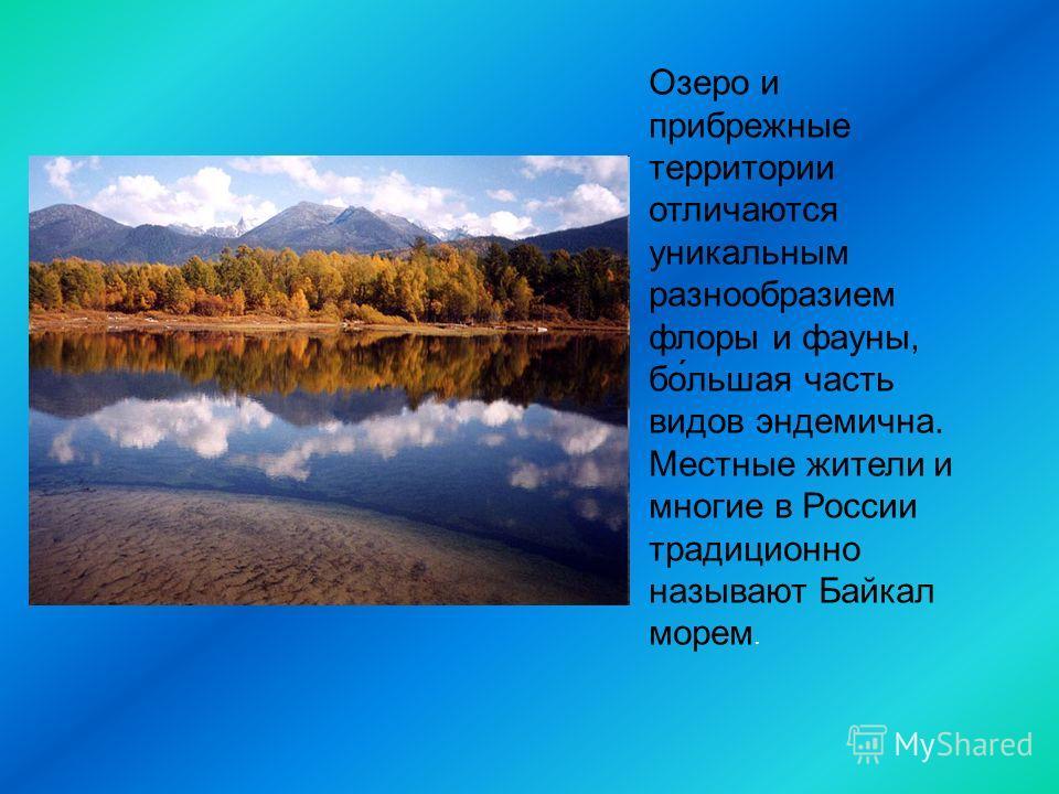 Озеро и прибрежные территории отличаются уникальным разнообразием флоры и фауны, бо́льшая часть видов эндемична. Местные жители и многие в России традиционно называют Байкал морем.