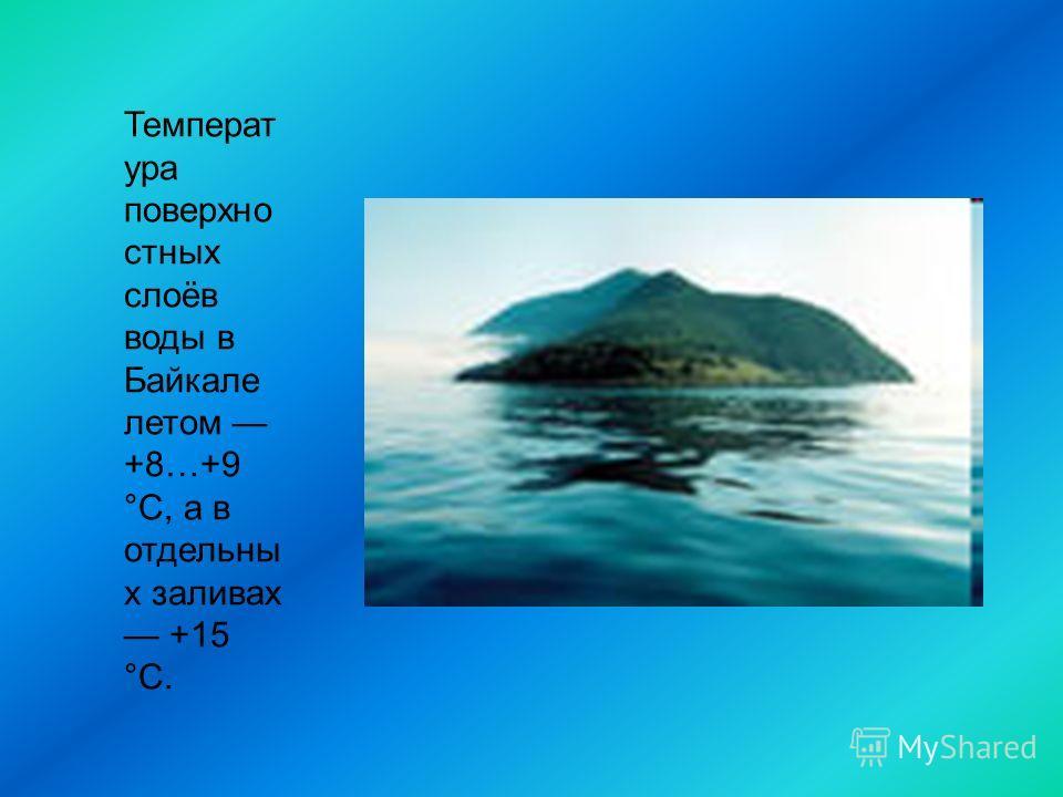 Температ ура поверхно стных слоёв воды в Байкале летом +8…+9 °С, а в отдельны х заливах +15 °C.