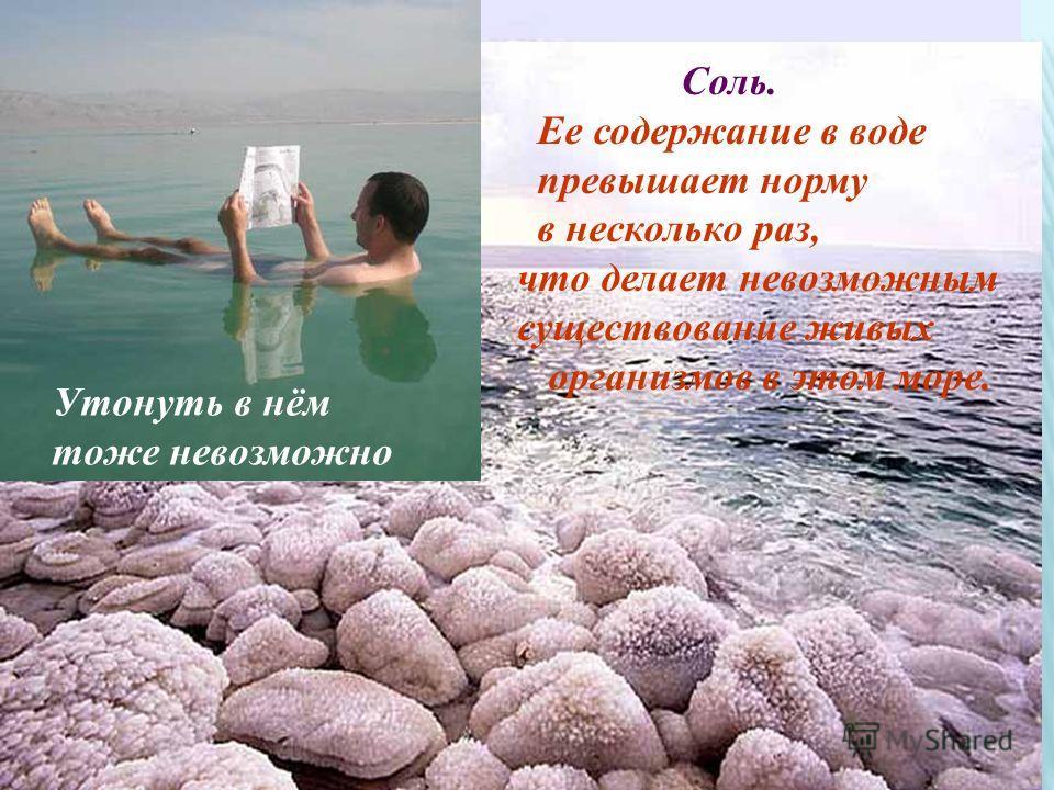 Что делает Мертвое море мертвым? Соль. Ее содержание в воде превышает норму в несколько раз, что делает невозможным существование живых организмов в этом море. Утонуть в нём тоже невозможно