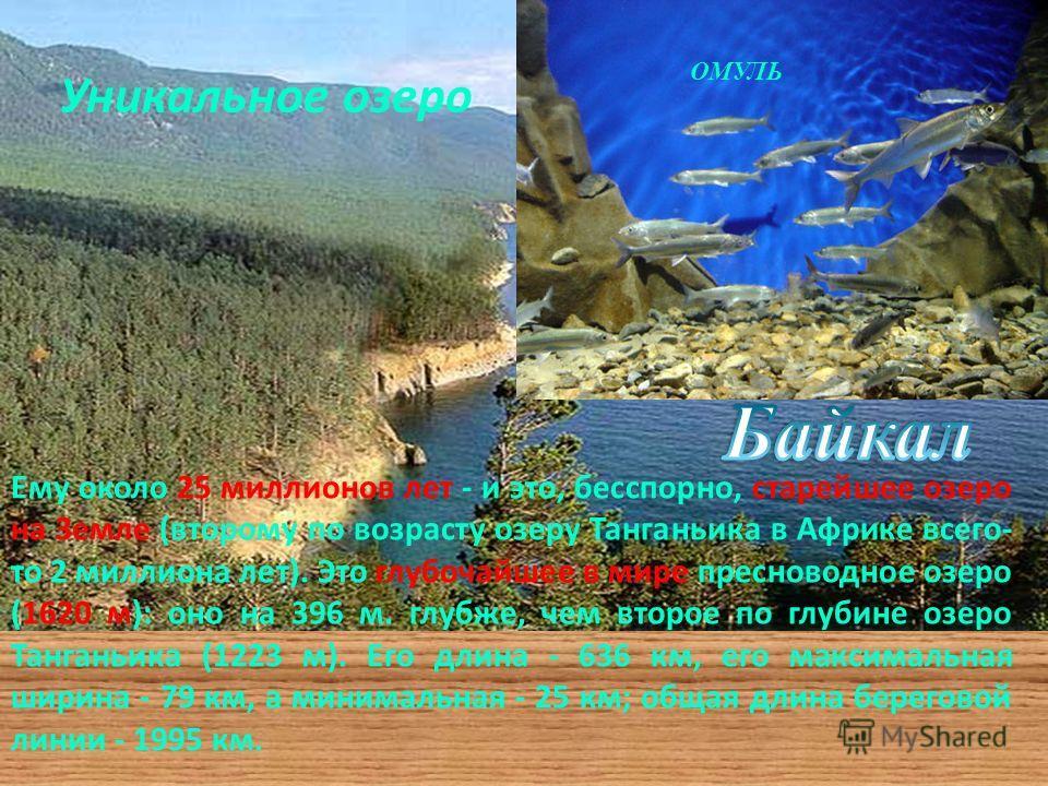 Уникальное озеро Ему около 25 миллионов лет - и это, бесспорно, старейшее озеро на Земле (второму по возрасту озеру Танганьика в Африке всего- то 2 миллиона лет). Это глубочайшее в мире пресноводное озеро (1620 м): оно на 396 м. глубже, чем второе по