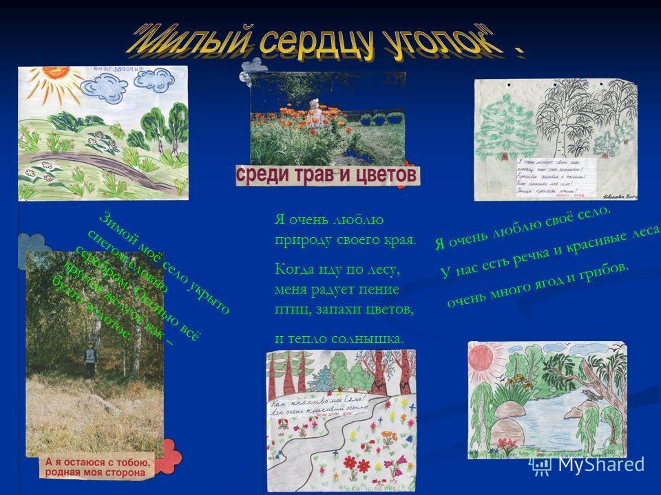 Я очень люблю своё село. У нас есть речка и красивые леса, очень много ягод и грибов. Я очень люблю природу своего края. Когда иду по лесу, меня радует пение птиц, запахи цветов, и тепло солнышка. Зимой моё село укрыто снегом словно серебром. Осенью