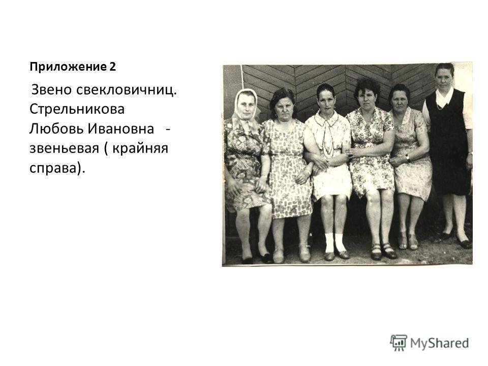 Приложение 2 Звено свекловичниц. Стрельникова Любовь Ивановна - звеньевая ( крайняя справа).