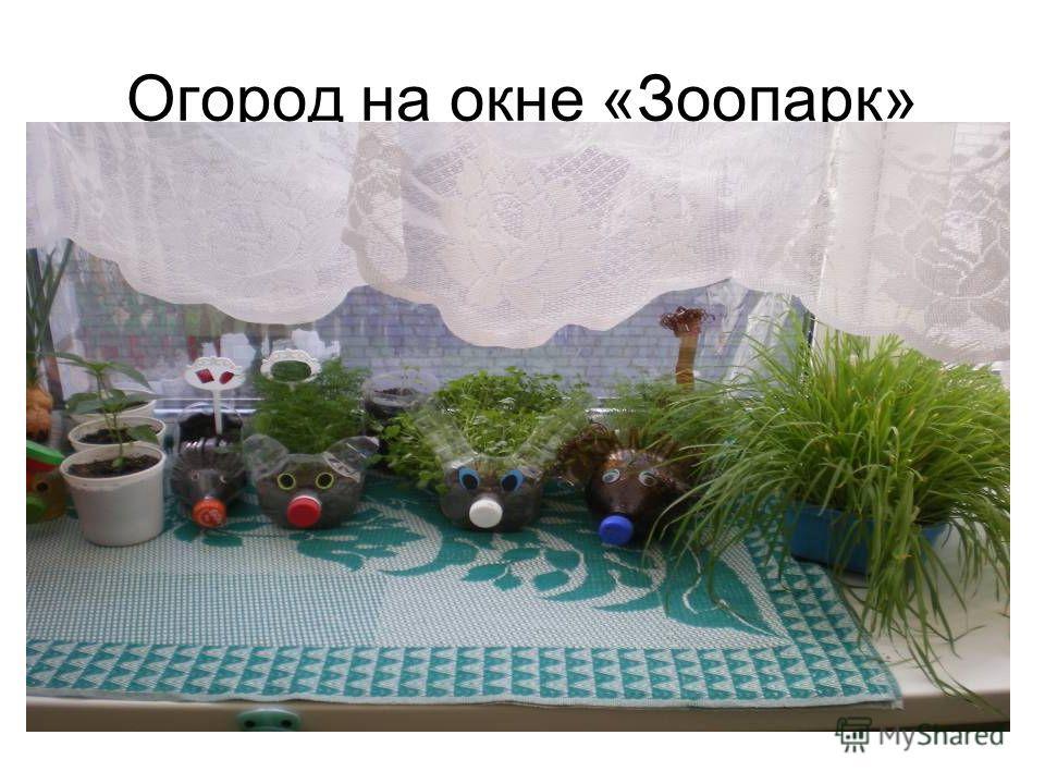 Огород на окне «Зоопарк»