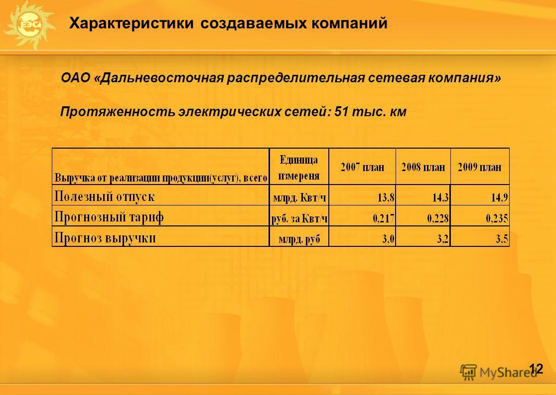12 ОАО «Дальневосточная распределительная сетевая компания» Протяженность электрических сетей: 51 тыс. км Характеристики создаваемых компаний