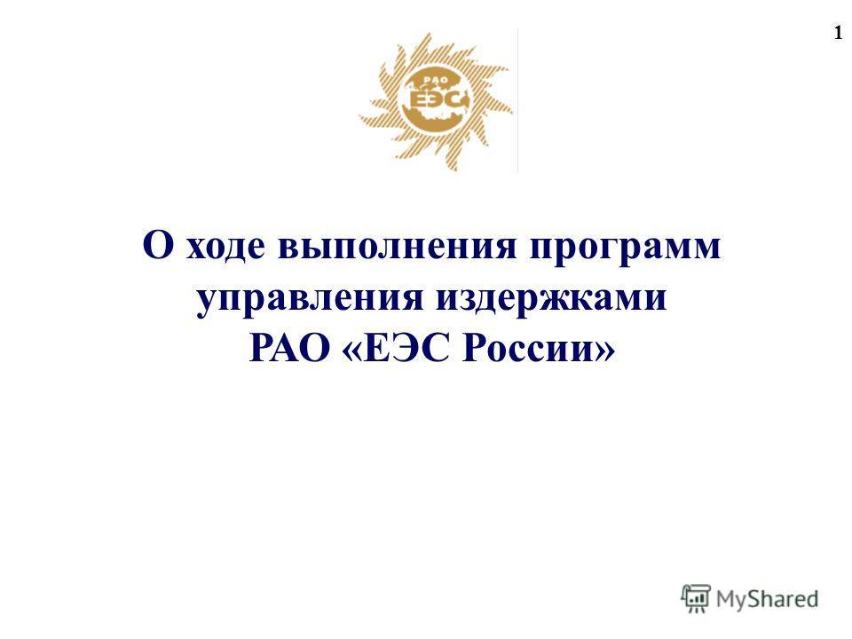 1 О ходе выполнения программ управления издержками РАО «ЕЭС России»