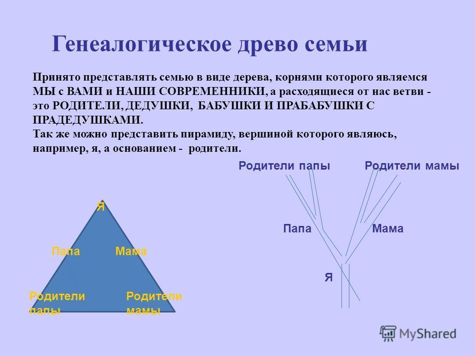 Генеалогическое древо семьи Принято представлять семью в виде дерева, корнями которого являемся МЫ с ВАМИ и НАШИ СОВРЕМЕННИКИ, а расходящиеся от нас ветви - это РОДИТЕЛИ, ДЕДУШКИ, БАБУШКИ И ПРАБАБУШКИ С ПРАДЕДУШКАМИ. Так же можно представить пирамиду