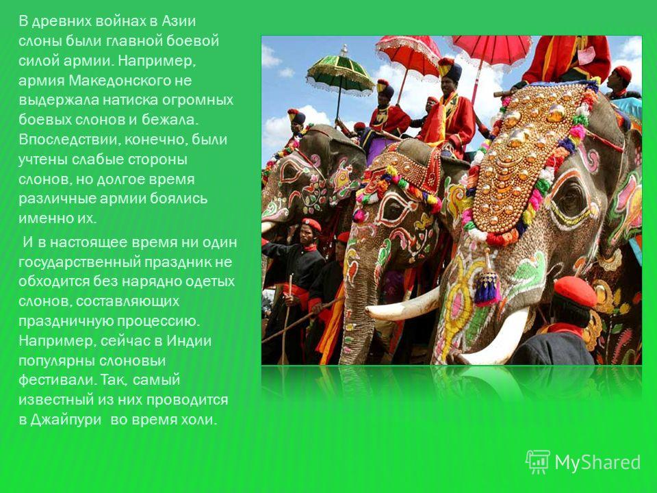 Среди буддистов Индии белый слон считается более священным животным, чем даже корова. Потому что именно в него, считают буддисты, покинув бренную оболочку, переселяются души жрецов и героев, королей и святых. С белым слоном связано немало историй. Та