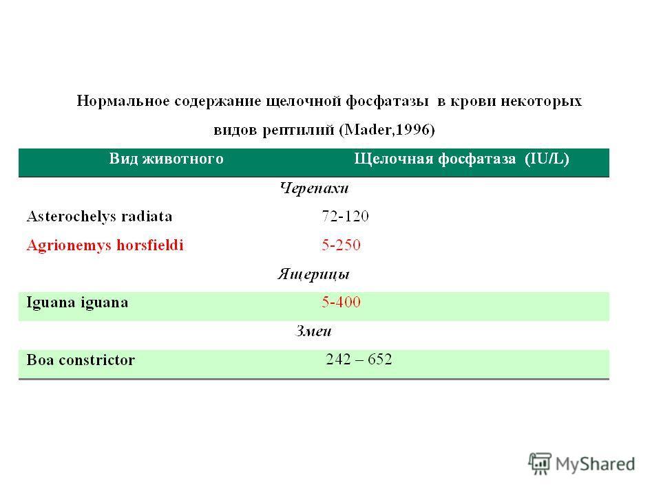 клиника от паразитов в казахстане