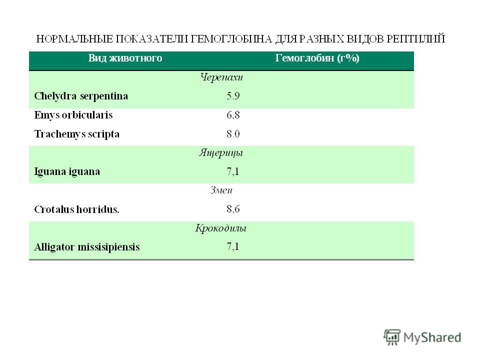 нормальные показатели холестерина в крови
