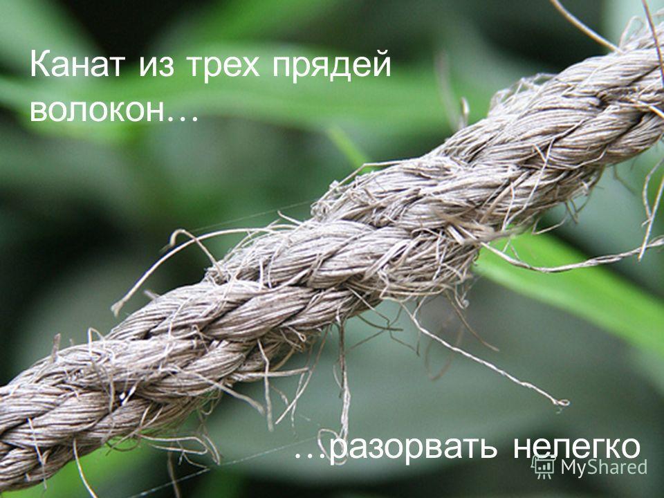 СПЕЦИАЛЬНАЯ ИНТЕРНАТУРА АМЕРИКАНСКОГО БИЗНЕСА Канат из трех прядей волокон … … разорвать нелегко