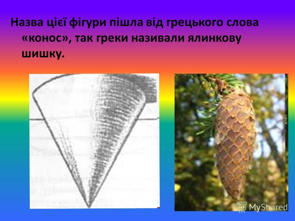Назва цієї фігури пішла від грецького слова «конос», так греки називали ялинкову шишку.