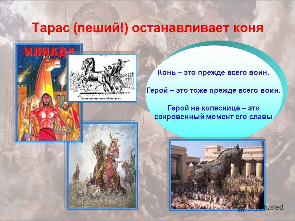 Тарас (пеший!) останавливает коня Конь – это прежде всего воин. Герой – это тоже прежде всего воин. Герой на колеснице – это сокровенный момент его славы