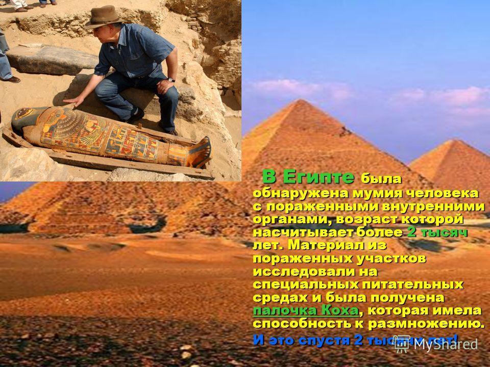 сош 40 В Египте была обнаружена мумия человека с пораженными внутренними органами, возраст которой насчитывает более 2 тысяч лет. Материал из пораженных участков исследовали на специальных питательных средах и была получена палочка Коха, которая имел